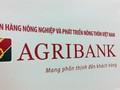 """Agribank: 15.000 tỷ đồng nợ xấu 'dính án"""" tại khu vực TP.HCM"""