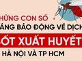 Infographic: Những con số đáng báo động về dịch sốt xuất huyết ở Sài Gòn và Hà Nội
