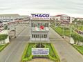Khi 'Con sếu lớn' Trường Hải bay về Quảng Nam