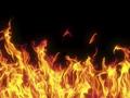 """""""Bà hỏa"""" - Nỗi khiếp sợ của nhiều doanh nghiệp trên sàn chứng khoán"""