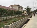 Hưng Yên: Hàng nghìn m2 đất bị bán trái thẩm quyền