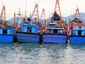 Vay đóng tàu cá mới, NHNN chấn chỉnh các ngân hàng yêu cầu bổ sung thêm thế chấp ngoài tàu