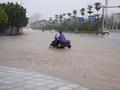 Thủ tướng chỉ đạo triển khai các biện pháp ứng phó mưa lũ