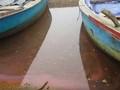 Lấy mẫu dải nước đỏ xuất hiện ở vùng cửa biển Hà Tĩnh