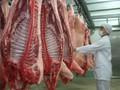 """Thịt lợn tìm """"lối thoát"""" sang thị trường Nhật, Hàn Quốc"""