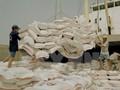 Ngành gạo không phải loay hoay giải quyết đầu ra đến hết quý 3