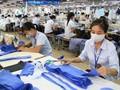 Dệt may Việt Nam sẽ tăng gấp đôi thị phần tại các thị trường CPTPP sau năm 2019
