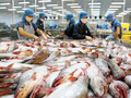Trung Quốc vẫn là thị trường tiềm năng của cá tra Việt Nam