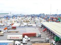Phế liệu tồn đọng ở cảng biển: Làm giả giấy tờ để nhập 'bom bẩn'