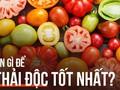 """4 loại rau quả là """"vua"""" thải độc và trẻ hóa: Bạn nên ăn để loại bỏ độc tố ra khỏi cơ thể"""