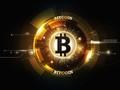 Nhóm người nắm giữ 14% tổng nguồn cung bitcoin và ethereum trên toàn cầu là ai?