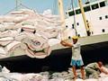Việt Nam trúng thầu 141.000 tấn gạo XK sang Indonesia