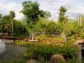 """Giải mã những tiêu chí """"vàng"""" của đô thị đáng sống nhất Hà Nội"""