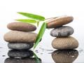 VNM, TMS, SHP, NTL, MDG, VNT, VTH, GLC, HEM, GVT, DXL: Thông tin giao dịch lượng lớn cổ phiếu