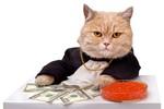 Tiền ồ ạt vào thị trường đẩy VnIndex lên đỉnh cao mới
