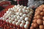 Dân buôn tiết lộ mẹo phân biệt trứng gà Ai Cập - trứng gà ta