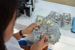 Tạm dừng bảo lãnh Chính phủ cho các khoản vay trong và ngoài nước