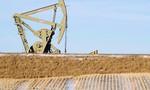Thỏa thuận của OPEC giúp giá dầu tăng 8% trong tháng 9