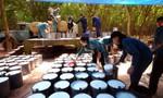 Giá cao su thiên nhiên tăng tới hơn 70%