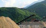 Xuất khẩu dăm gỗ Việt Nam đối mặt với khó khăn chồng chất