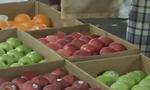 Lỏng lẻo trong kiểm tra trái cây nhập khẩu tại biên giới