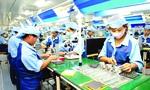 100 doanh nghiệp ngành điện tử lớn nhất Việt Nam: 99 cái của ngoại, 1 của Việt Nam nhưng chót bảng