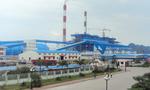 SICI đưa 51,4 triệu cổ phần Nhiệt điện Quảng Ninh ra bán đấu giá trọn lô
