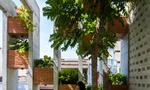 """Căn nhà như resort ở Đà Nẵng nổi """"bần bật"""" trên báo Mỹ"""