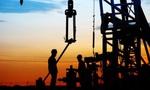 OPEC gây thất vọng, giá dầu lao dốc 5%