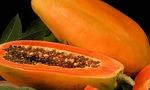 Mang 10 bệnh sau thì nên tránh ăn đu đủ nếu không muốn bệnh nghiêm trọng hơn