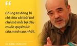 """GS Đặng Hùng Võ: """"Chúng ta đang bị chia cắt bởi thể chế mà mỗi bộ đều muốn quyền lực của mình cao nhất"""""""