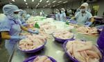 Xuất khẩu cá tra đông lạnh sang thị trường EU nhiều triển vọng
