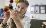 Áp dụng quy tắc của CEO để dạy dỗ trẻ thông minh hơn