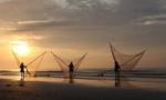 Bên cạnh các bluechips truyền thống, Vietnam Holding bất ngờ mua 10% VĐL một công ty sản xuất dây và lưới đánh cá