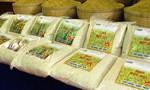 Gạo nội cạnh tranh khốc liệt với gạo ngoại ngay trên sân nhà