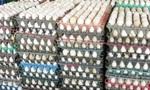 Trứng gia cầm giảm giá mạnh