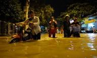 Thiệt hại do mưa bão 2016
