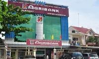 Xét xử vụ án thất thoát hơn 600 tỷ đồng ở Agribank Chi nhánh 7