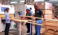 Ông chủ gỗ Trường Thành lại đăng ký mua 2 triệu cp TTF sau khi mua xong 3,5 triệu cp