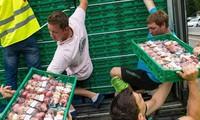 Nga ban hành sắc lệnh tiêu hủy hàng hóa nhập khẩu trái phép