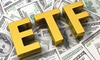 Cơ hội và thách thức nhìn từ Market Vectors Vietnam ETF