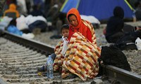 Liên Hợp Quốc sẽ triệu tập cuộc gặp cấp cao về khủng hoảng tị nạn
