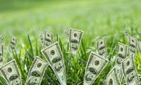 Lịch chốt quyền tạm ứng cổ tức bằng tiền của 12 doanh nghiệp