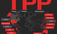Đàm phán TPP: Bất đồng thời gian bảo hộ dược phẩm