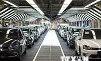 Hãng Volkswagen bắt đầu gian lận khí thải từ năm 2009
