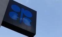 Dầu giảm giá mạnh vì sản lượng OPEC lên cao kỷ lục