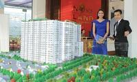Novaland: Bến đỗ lý tưởng cho nhân tài ngành bất động sản