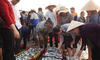 Cá bán giá bèo, ngư dân vẫn ngóng chính sách