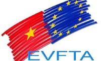 Kết quả hình ảnh cho EVFTA