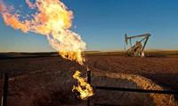 Giá dầu thoát đáy 3 tháng